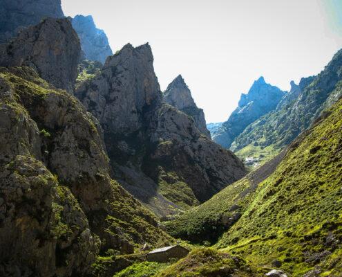 Parque nacional de Picos de Europa Leon
